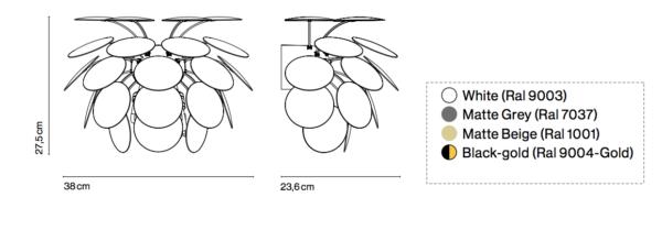 Maße der blütenförmigen Wandleuch